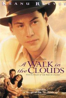 A-Walk-in-the-Clouds