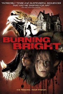 Burning-Bright