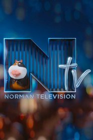 Norman-Television