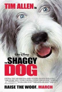 The-Shaggy-Dog